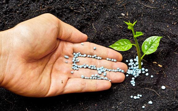 Recycling - Organic Fertilizer 1